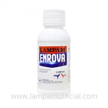 ENROVA (S) เอ็นโรว่า ชนิดน้ำ (เล็ก) 100 ml.