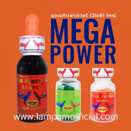 ชุด MEGA POWER (VIP) (B) ชุดเมก้า เพาว์เวอร์ วีไอพี (ใหญ่)