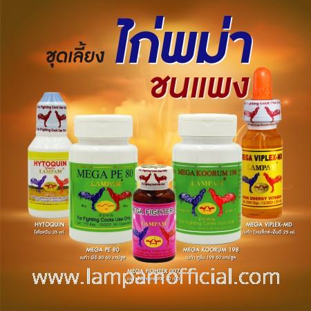 ชุดเลี้ยง ไก่พม่า ชนแพง
