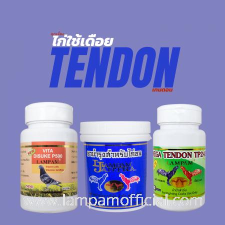 ชุดเลี้ยง ไก่ใช้เดือย TENDON เทนดอน