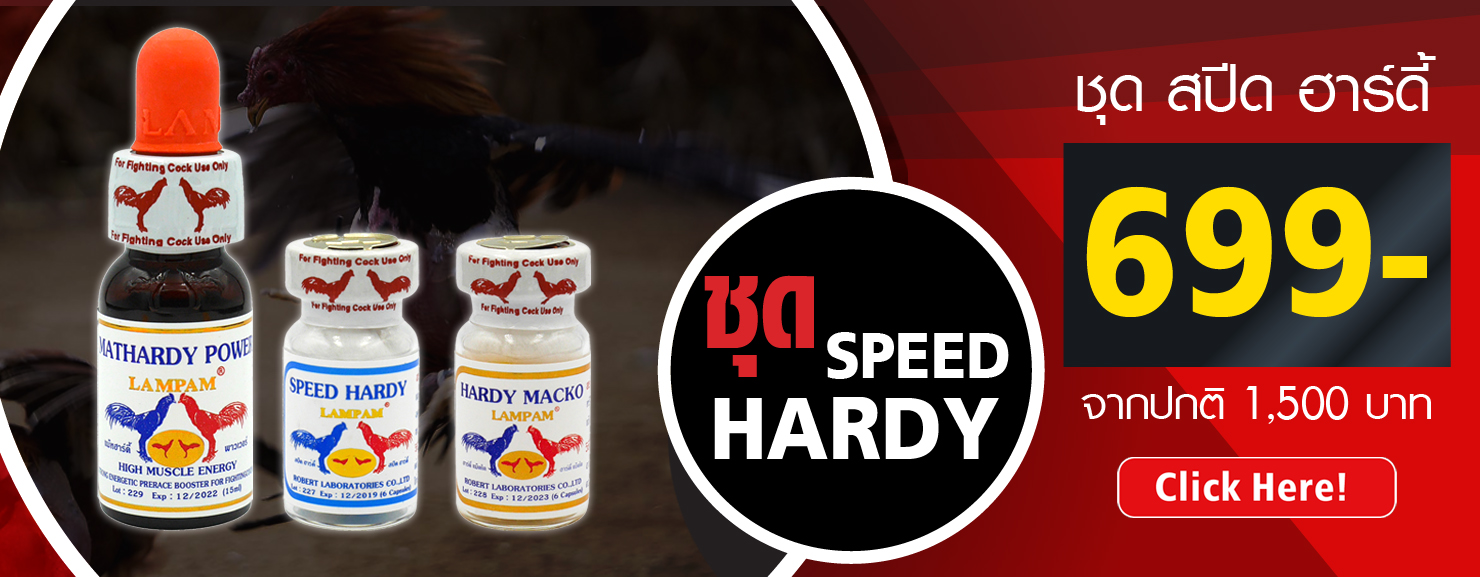 ชุด SPEED HARDY